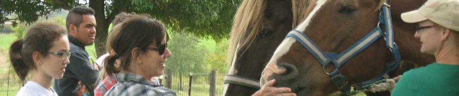 cropped-lori-horse-folks.jpg